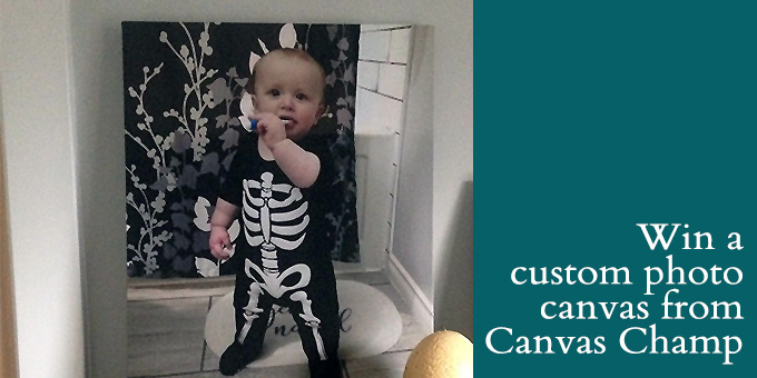 CanvasChamp Canada Review and Giveaway!